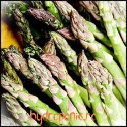Sparanghel - Asparagus...